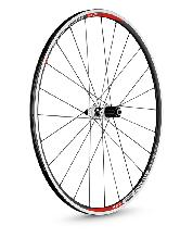 Wheels DT Swiss 700c R 23 Spline Road