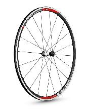 Wheels DT Swiss 700c R 28 Spline Road